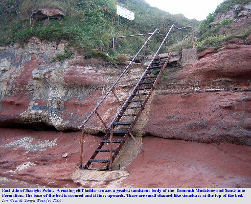 A rusting ladder crosses a graded bed of sandstone at Straight Point, west of Budleigh Salterton, Devon