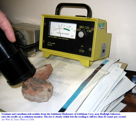 Recording radiation from uranium and vanadium-rich nodules of the Littleham Mudstone, Littleham Cove