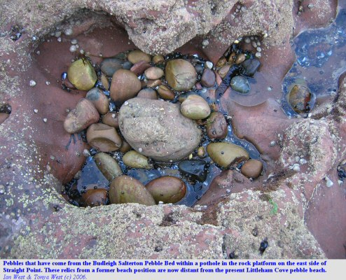 Pothole eroded by quartzite pebbles from the Budleigh Salterton pebble bed, on the east side of Straight Point, Devon