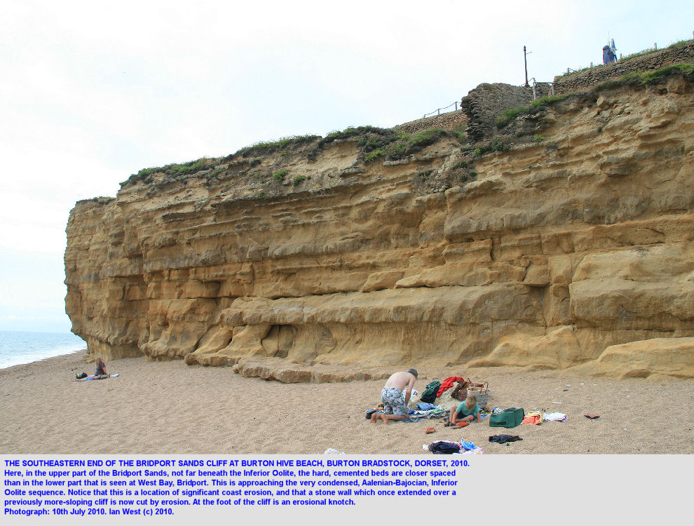 The southeastern end of the cliff of Bridport Sands at Burton Bradstock, Dorset, showing close-spaced cemented beds a short distance beneath the Inferior Oolite, 2010