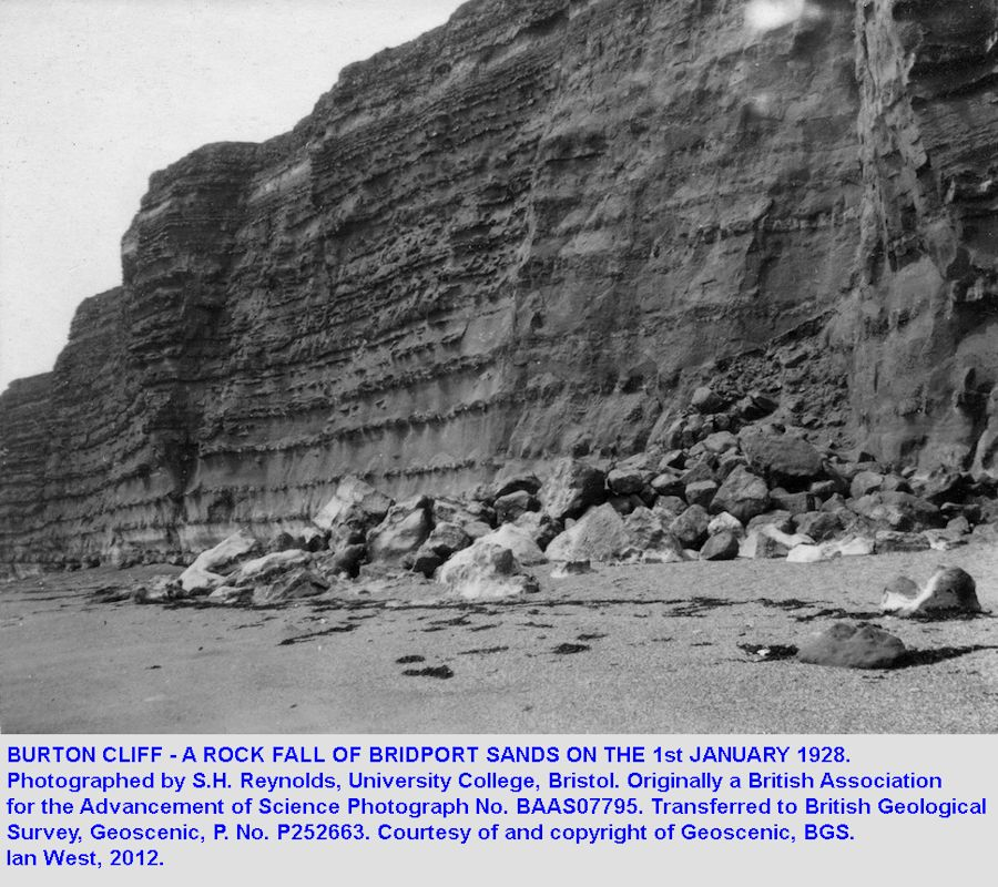 Rock fall at Burton Cliff, Burton Bradstock, Dorset, in 1928