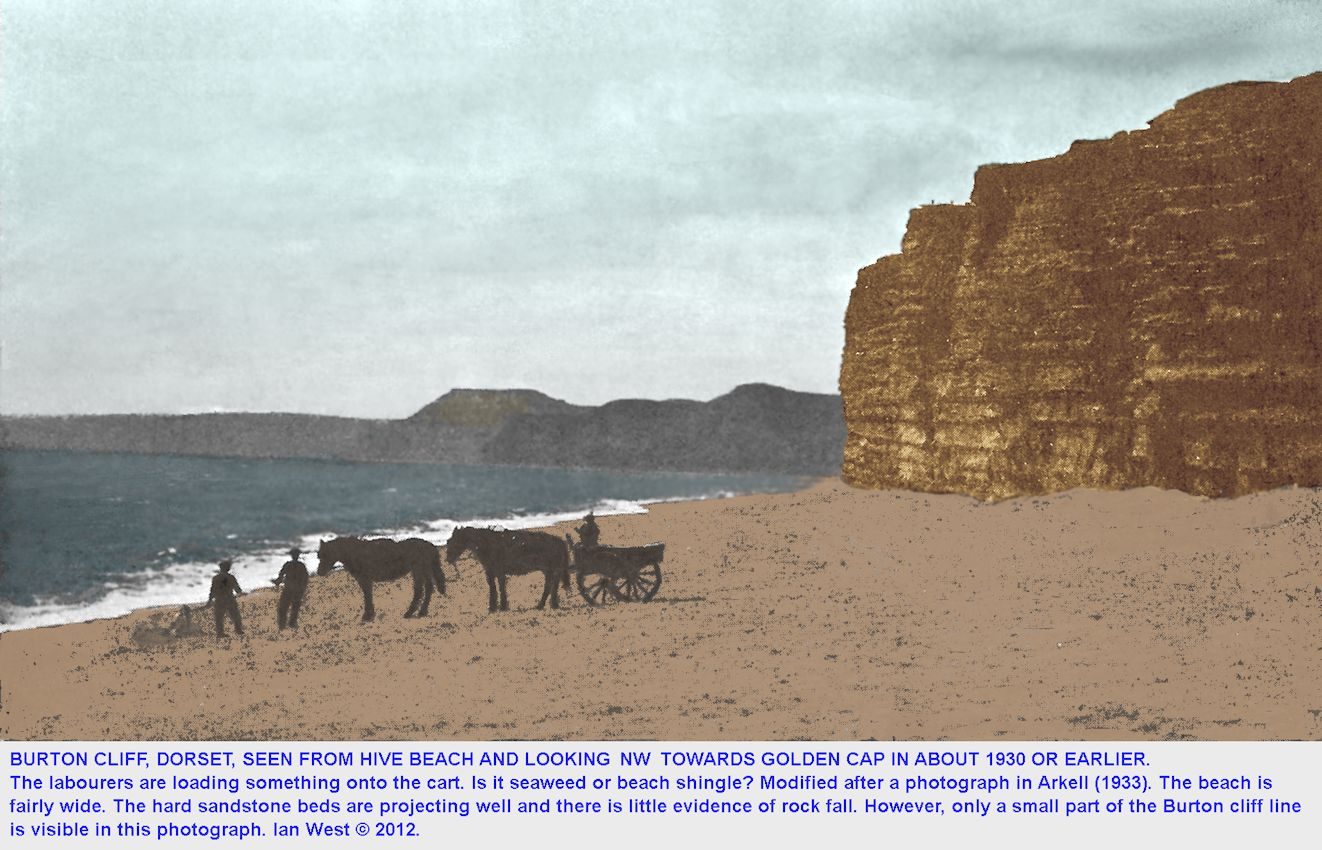 Loading a cart on the beach at the Burton Hive end of Burton Cliff, Burton Bradstock, Dorset, in about 1930