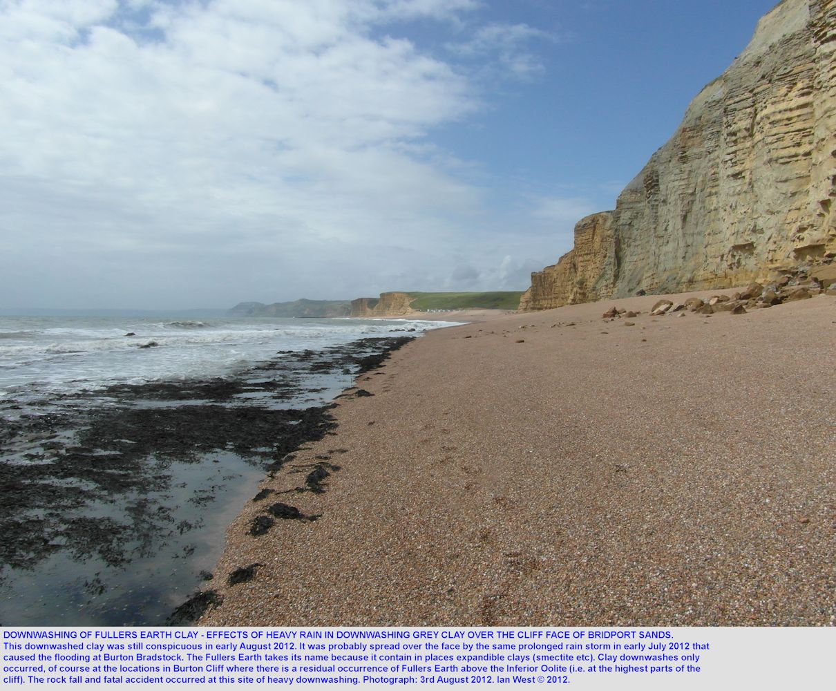 An area of clay downwashed from the Fullers Earth, western part of Burton Cliff, Burton Bradstock, Dorset, 3rd August 2012