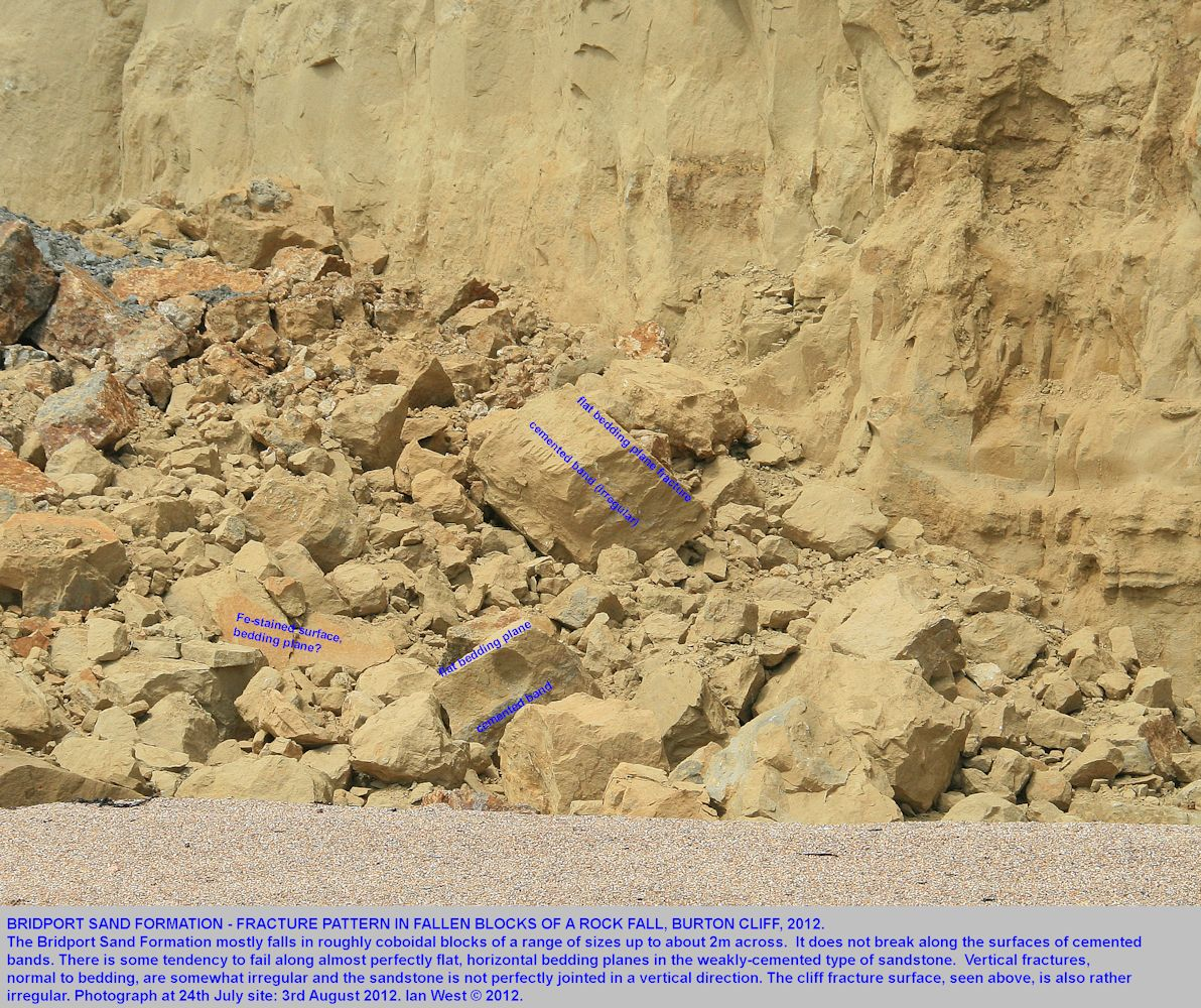 The fracture pattern of the Bridport Sand Formation debris, rock fall of the 24th July 2012, Burton Cliff, Burton Bradstock, Dorset, photo 3rd August 2012