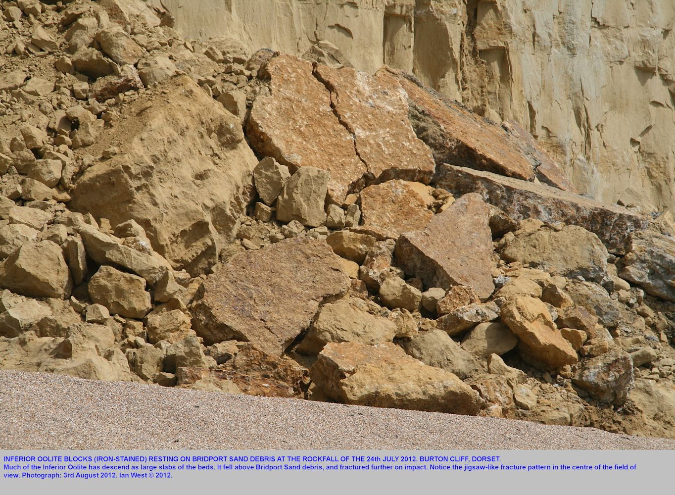 Blocks of Inferior Oolite, fractured in jigsaw-like manner at impact on Bridport Sand debris, Burton cliff, Burton Bradstock, Dorset, photo 3rd August 2012