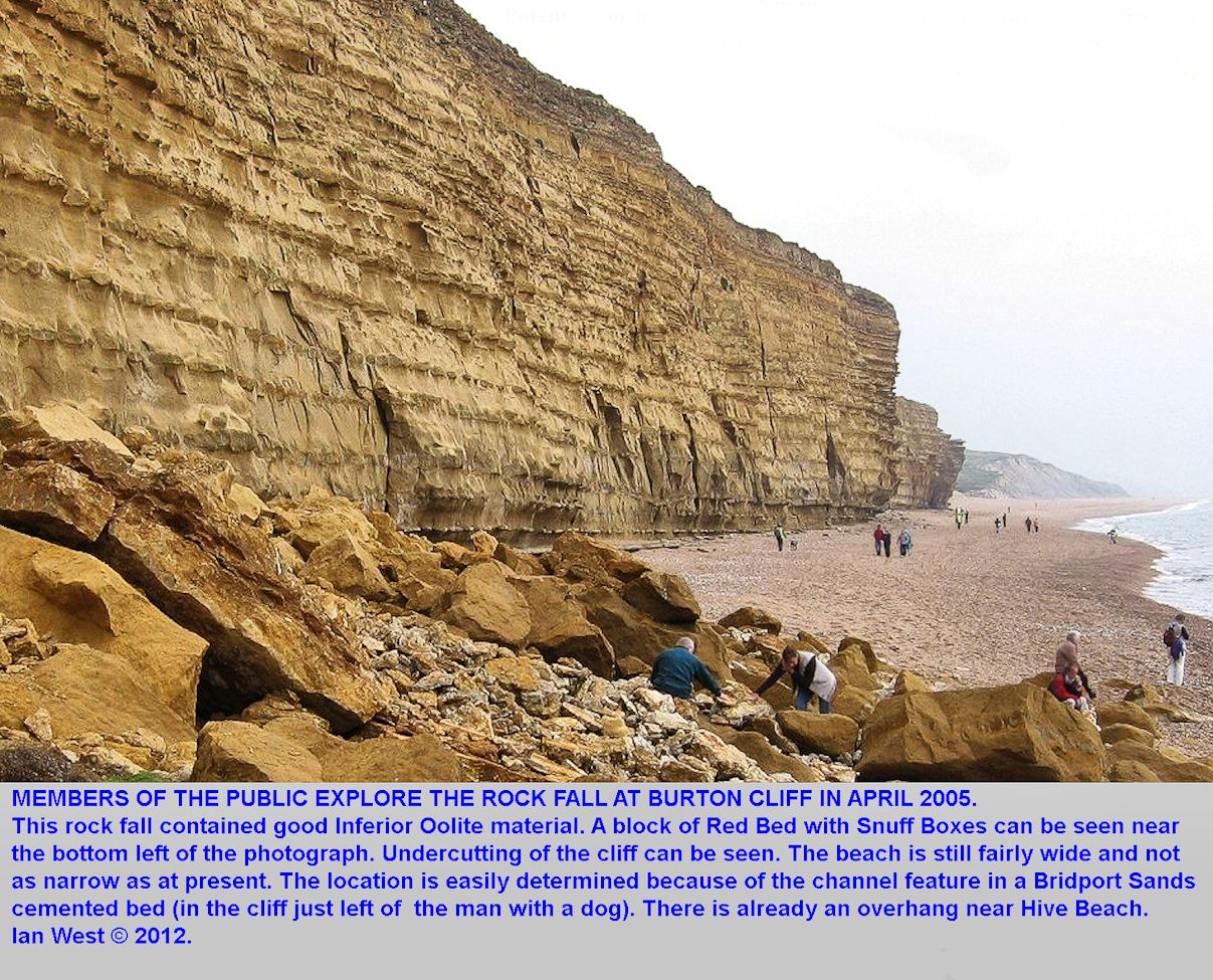 Members of the public explore the rock fall at Burton Bradstock, Dorset, in April 2005