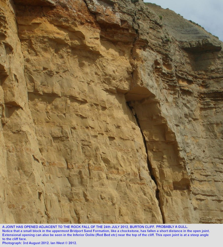 A vertical joint, oblique to the cliff, and near the southeastern boundary of the July 2012 rock fall at Burton Cliff, Burton Bradstock, Dorset