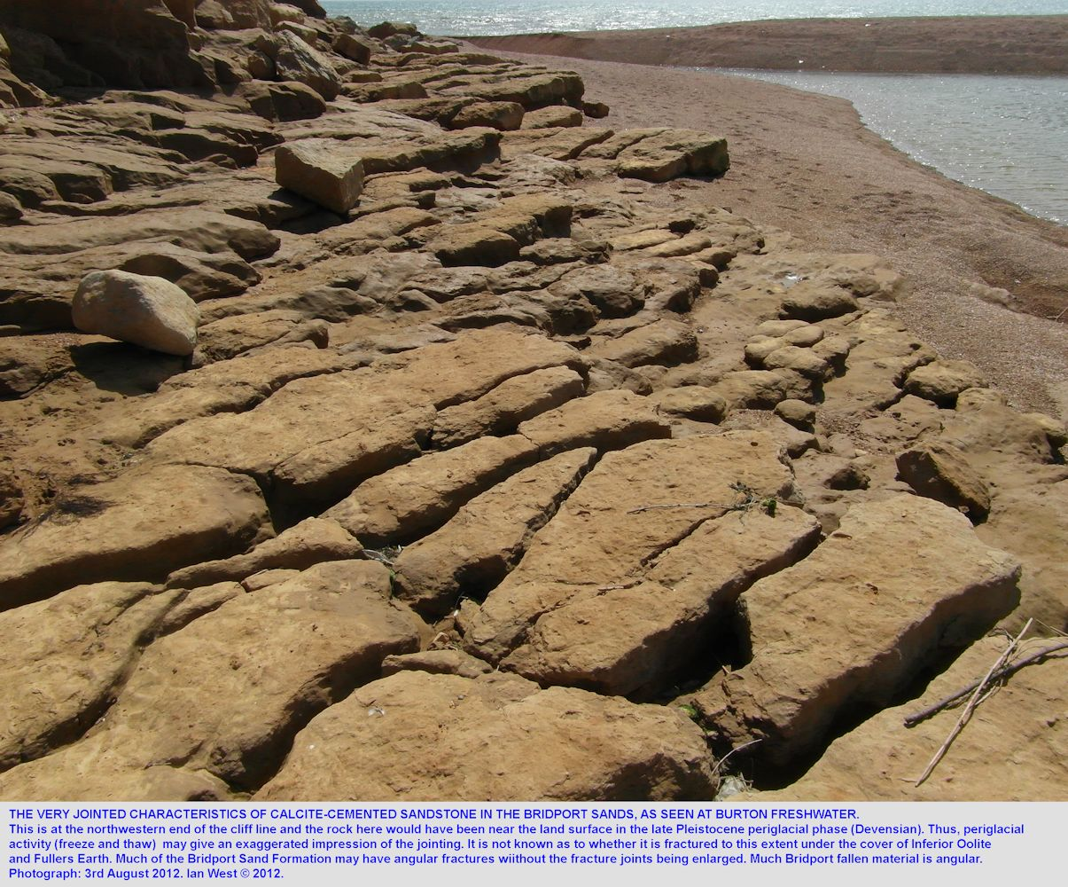 Widened joints in calcite-cemented beds at Burton Freshwater, Burton Bradstock, Dorset, 3rd August 2012
