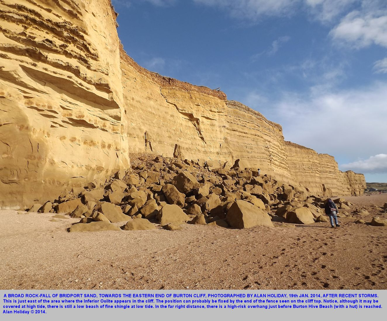 A view of the broad Bridport Sand rock-fall towards the eastern end of Burton Cliff, Burton Bradstock, Dorset, 19th January 2014, photographed by Alan Holiday