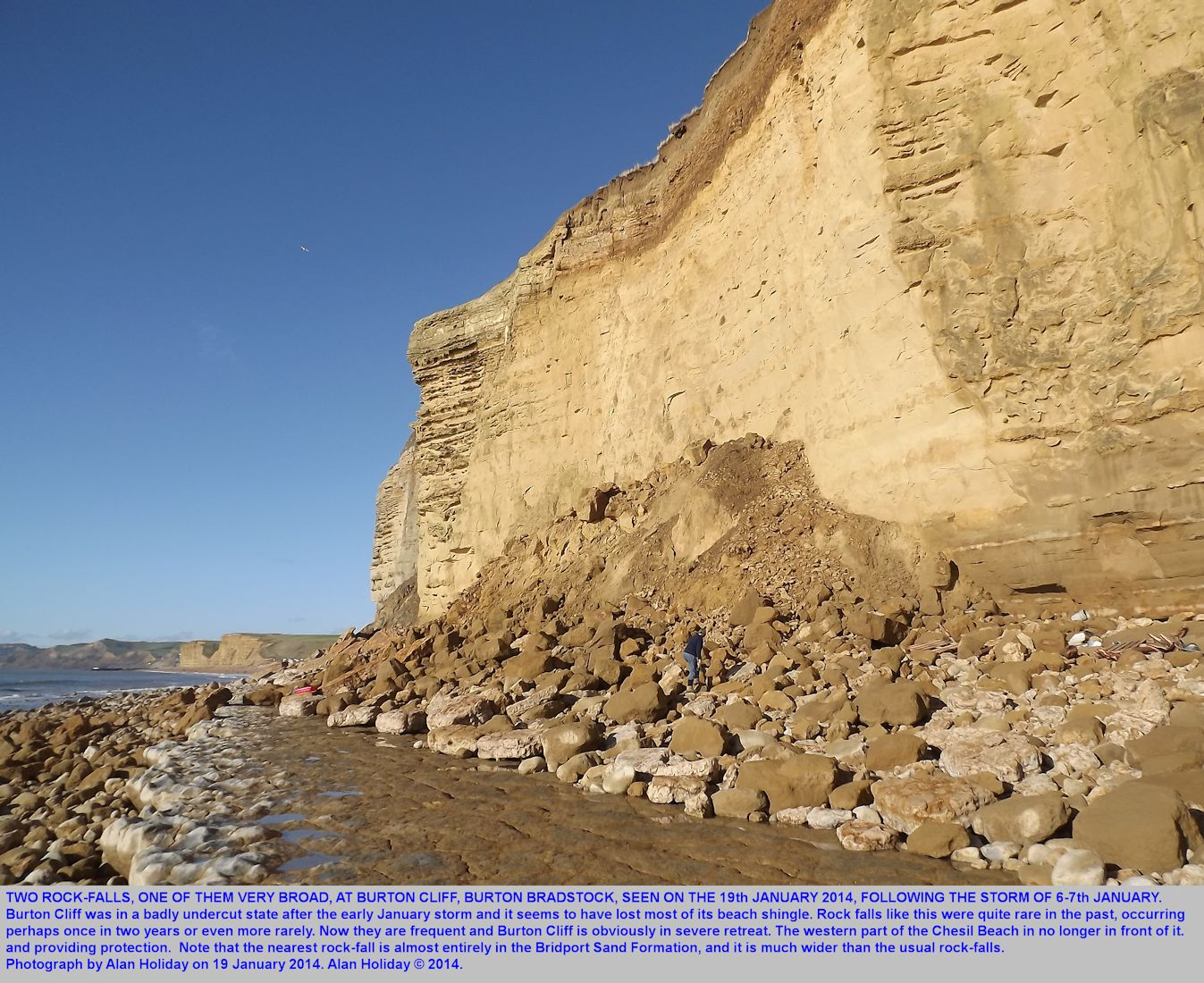 Two rock falls, one of them very broad at Burton Cliff, Burton Bradstock, Dorset, as photographed by Alan Holiday on 19th January 2014