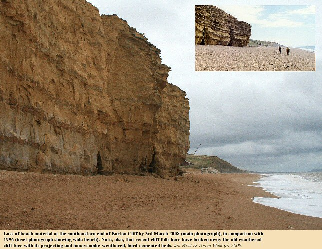 Erosion and loss of beach material at the southeastern end of Burton Cliff, near Burton Hive, Burton Bradstock, Dorset, from 1996-2008