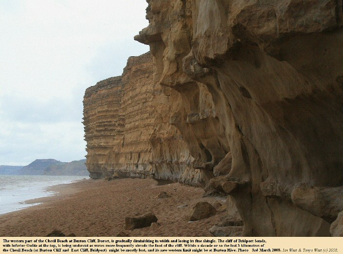 Diminishing Chesil Beach and undercut cliffs of Bridport Sands with Inferior Oolite above, at Burton Cliff, Burton Bradstock, Jurassic Coast, Dorset, 3rd March 2008