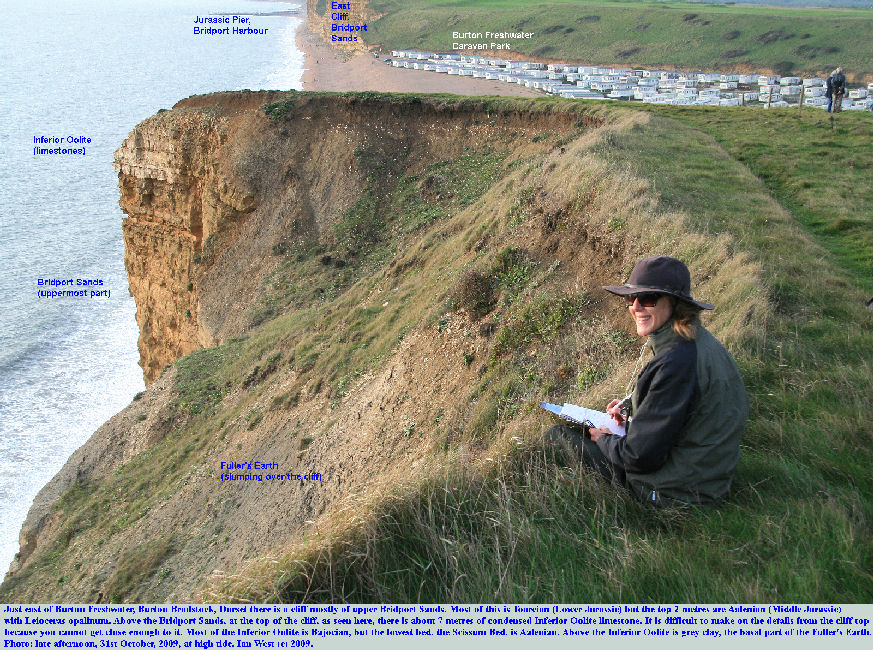 The cliff top near Burton Freshwater, Burton Bradstock, Dorset, Jurassic Coast, showing the junction of the Bridport Sands and the Inferior Oolite limestones, with Fuller's Earth above, with Helen for scale
