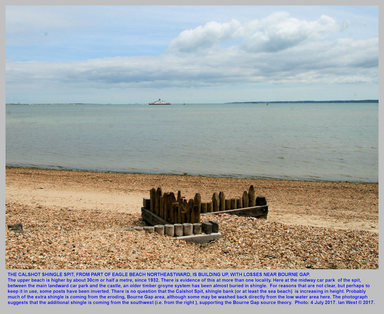 An older zigzag, timber groyne at the midway lcoation of Calshot Spit is showing the same rise in the top shingle bank, as at Eagle Cliff, near Eaglehurst