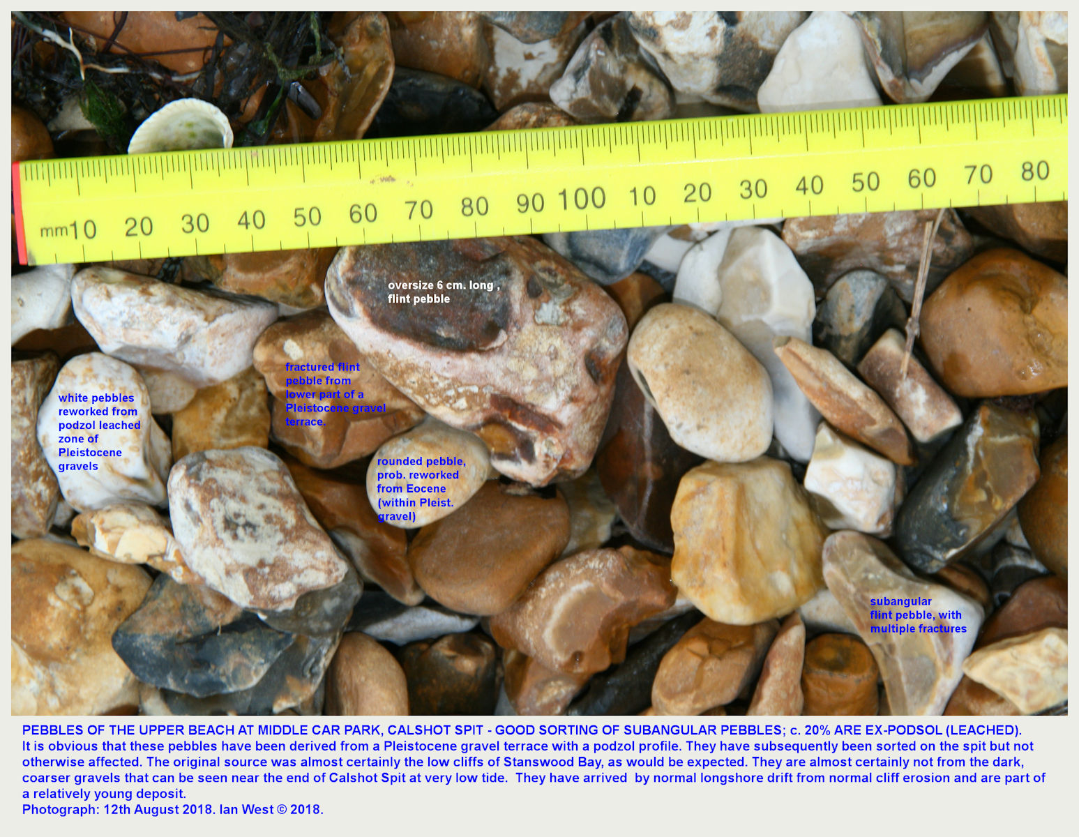 More typical beach pebbles of Calshot Spit, as seen on the beach in front of the mid-spit car park, with some pebble details labelled
