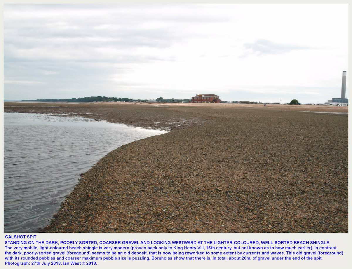 Light-coloured, medium grained-sized, well-sorted shingle forms the bank of Calshot Spit, whereas the older, dark, poorly sorted gravel is reworked out on this low-tide bank