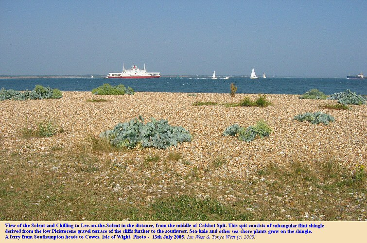 A view of the Solent from the middle of Calshot Spit, Hampshire, July 2005.