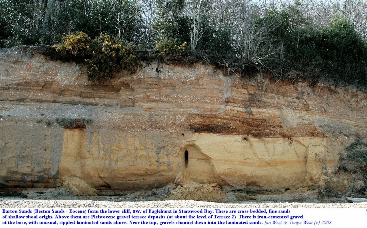 Barton Sands and Pleistocene gravel cliffs, in the Bourne Gap area, southeastern part of Stanswood Bay, Hampshire