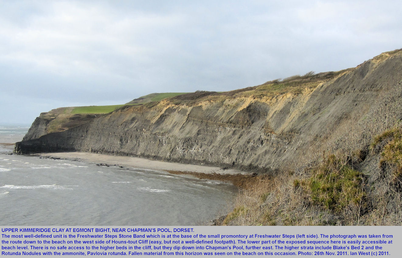 The cliffs of Egmont Bight, west of Chapman's Pool, Dorset, 26th November 2011