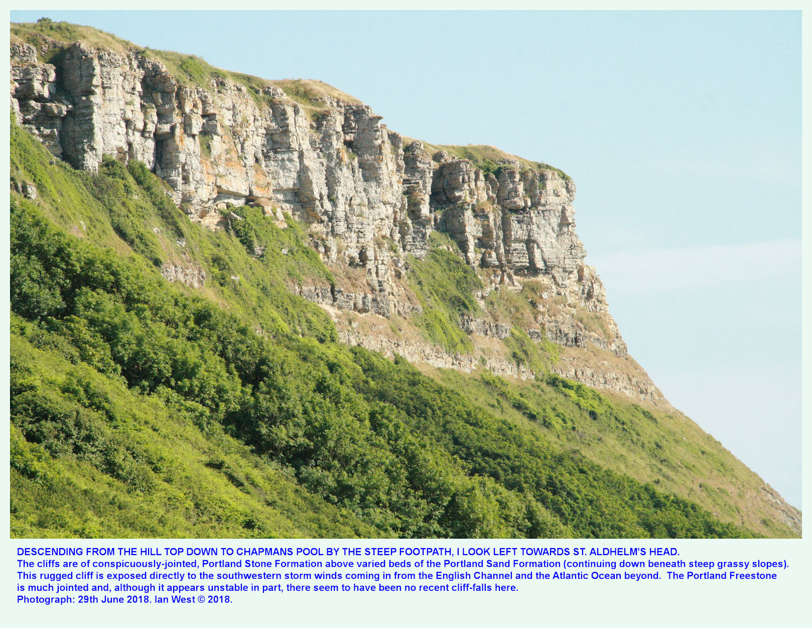 The vertical wall of Portland Stone in the upper cliff of St. Aldhelms Head adjacent to Chapman's Pool, Dorset, July 2018