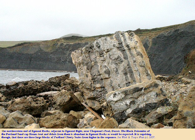 Large fallen blocks of Portland Cherty Series at Egmont Point near Chapman's Pool, Dorset