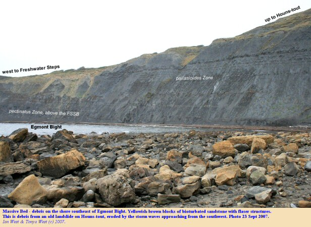 Eroded toe of old mudslide on the western side of Houns-tout Cliff, near Chapman's Pool, Dorset, with blocks from the Massive Bed of the Portland Sand