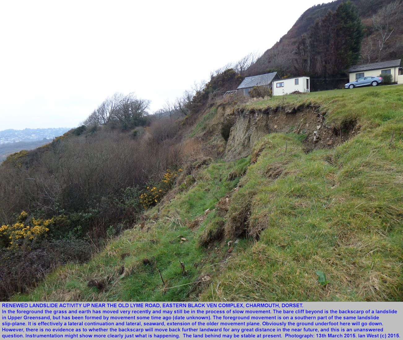 The backscarp of an older landslide near the Old Lyme Road, Black Ven complex, Charmouth, Dorset, with a newer extension to the backscarp in the foreground