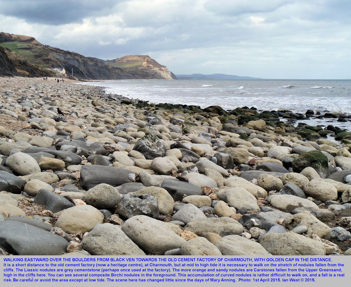 The beach of boulders, at the eastern part of Black Ven, at the Bar Ledge at mid tide, just west of Charmouth, Dorset