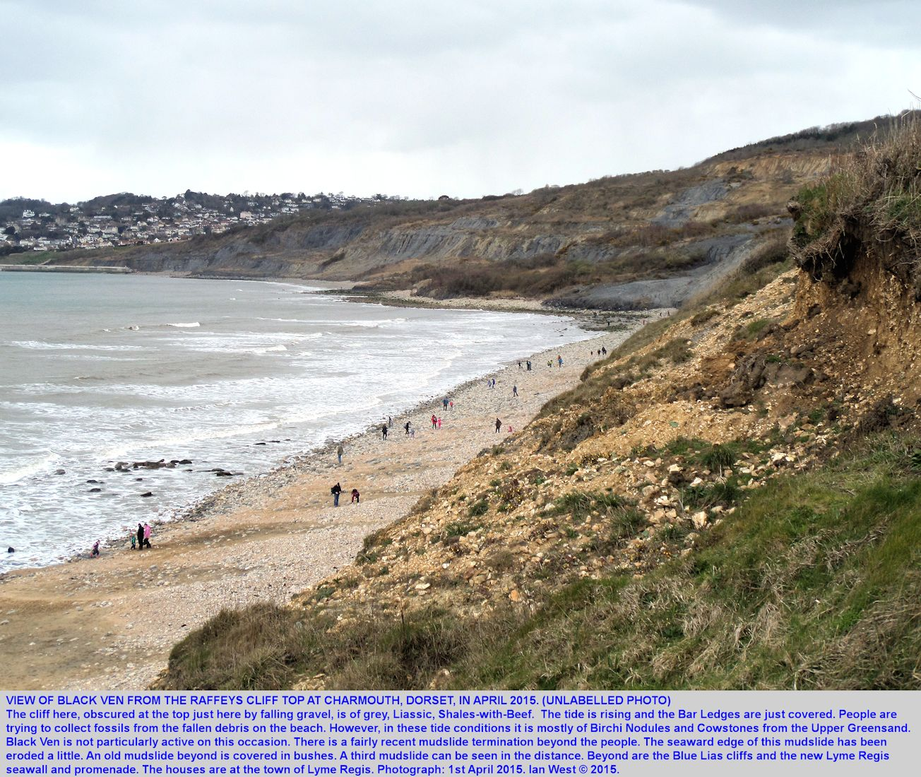 A view westward of the Black Ven landslide complex from cliff at Raffeys, Charmouth, Dorset, 1st April 2015