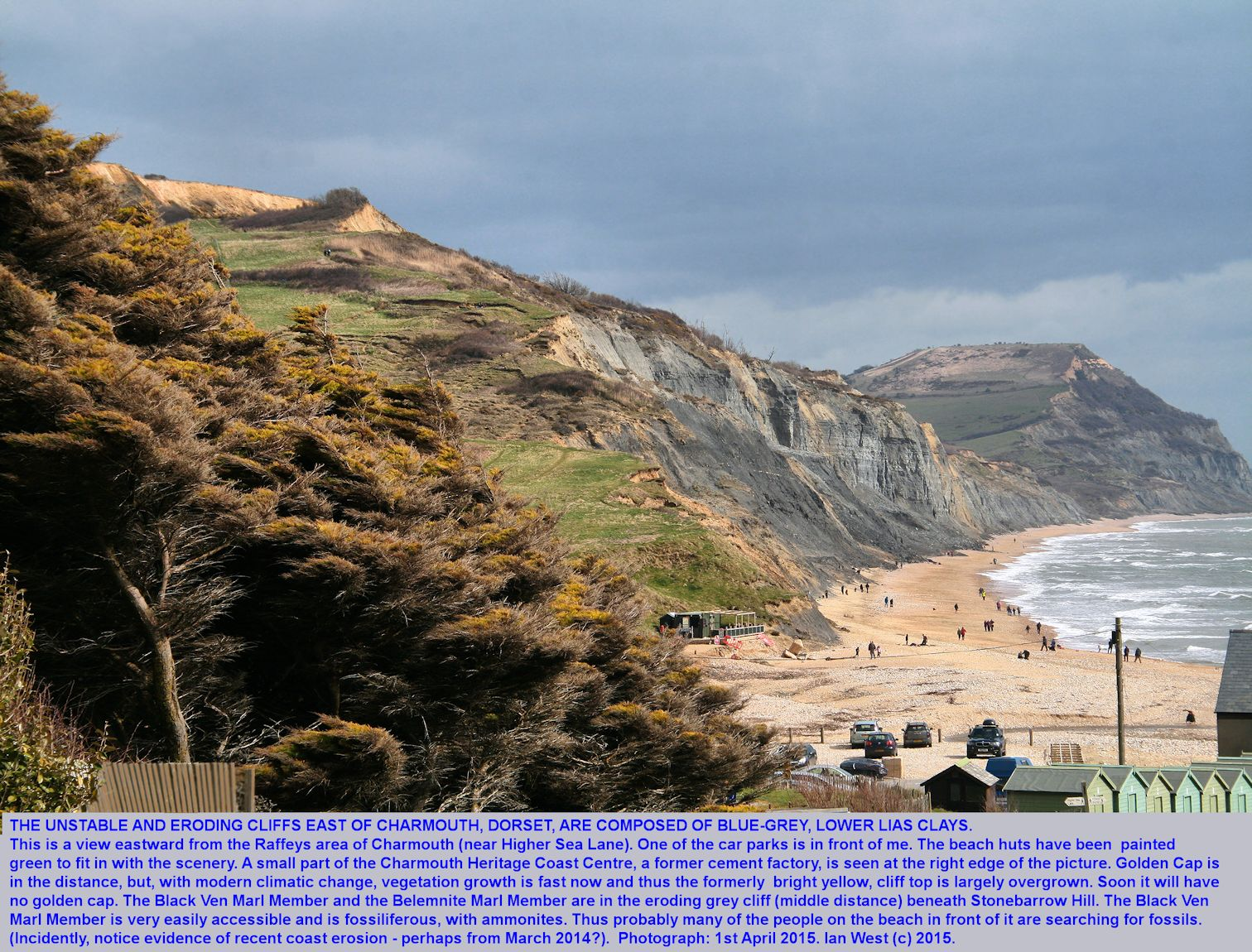 A view eastward of the Liassic clay cliffs, under Stonebarrow Hill and on to Golden Cap, east of Charmouth, Dorset, 1st April 2015, photo from Raffeys
