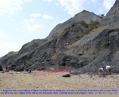 Rock fall from the Black Ven Marls, below Stonebarrow, Charmouth