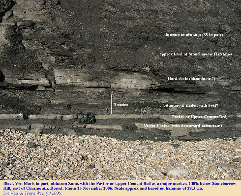 The Pavior or Upper Cement Bed with the Under-Pavior in the Black Ven Marls of the cliffs below Stonebarrow Hill, east of Charmouth, Dorset
