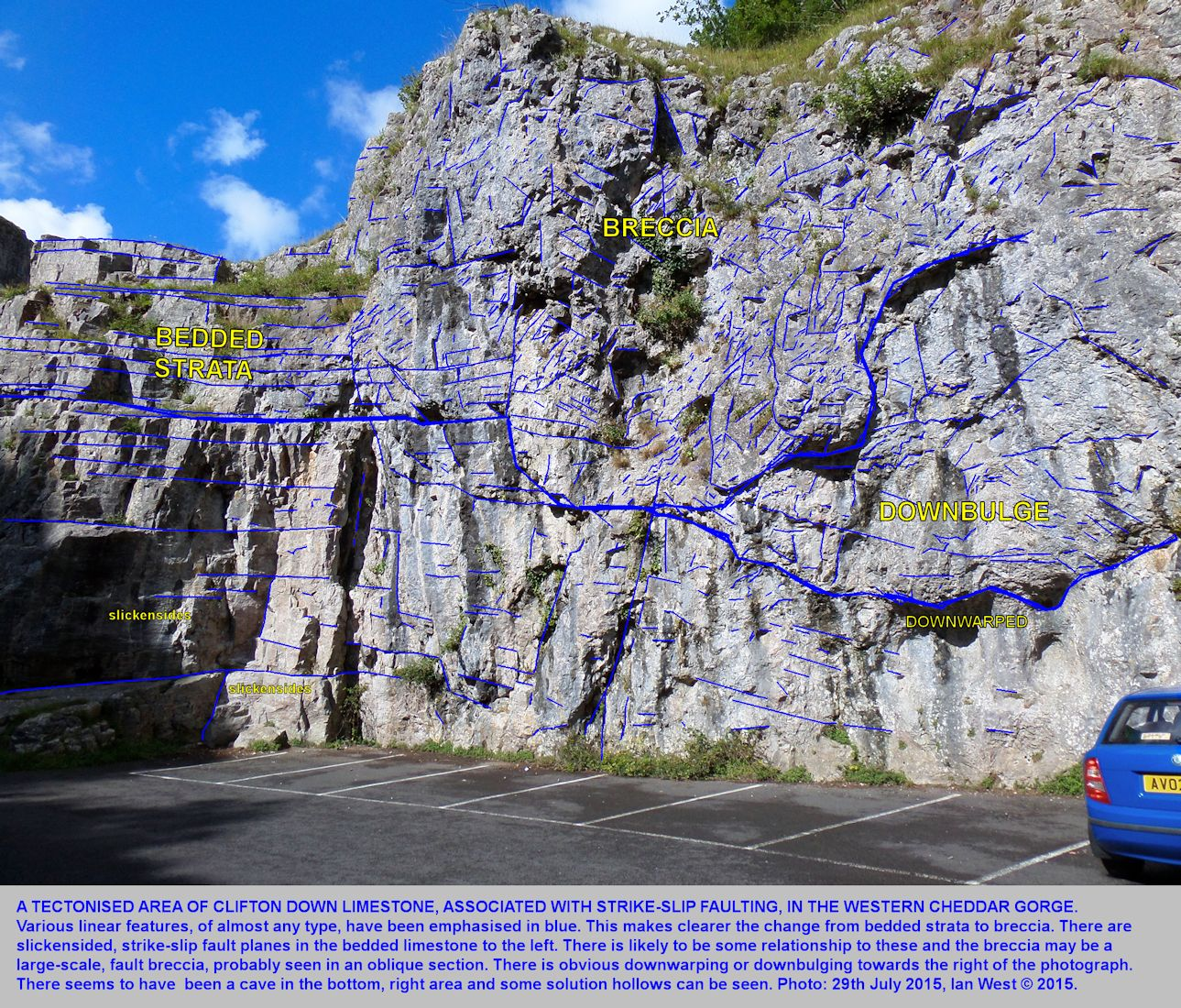 A tectonised zone of Clifton Down Limestone, adjacent to strike-slip faults, lower part of Cheddar Gorge, Mendip Hills, Somerset, 29th July 2015