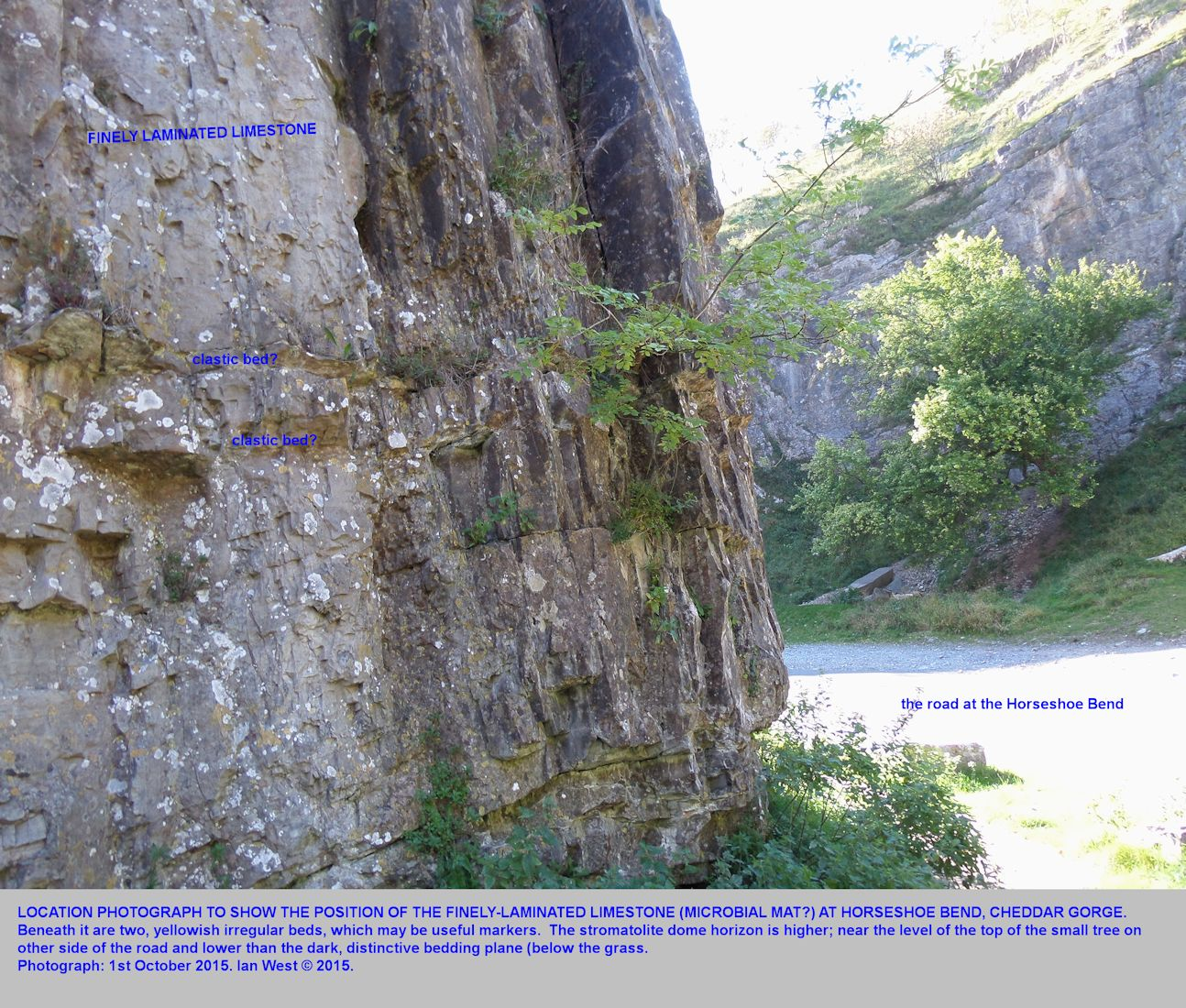 A location photograph to show the position of the finely laminated limestone at Horseshoe Bend, Cheddar Gorge, Mendip Hills, Somerset, 1st October 2015