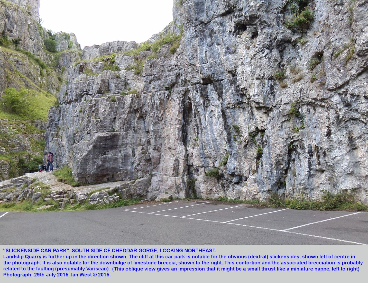 A slickensided fault surface and a tectonic downbulge at a car park in the lower Cheddar Gorge, Mendip Hills, Somerset, 29th July 2015