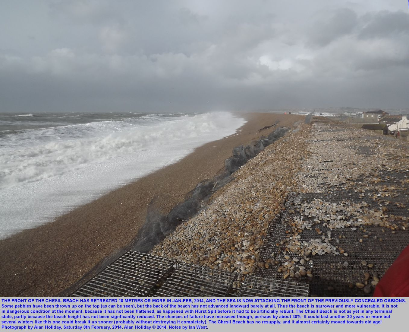 The front of the Chesil Beach at Chiswell has retreated to the gabions but the back has not accreted; the beach here is now in decline, photograph Alan Holiday, 8th February 2014