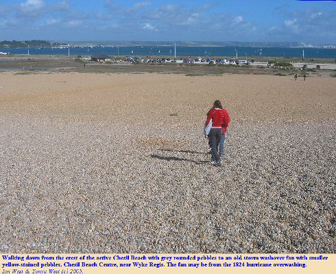 Old washover fan near the Chesil Beach Centre, Dorset, seen from the bank