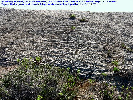 Aeolianite - cemented dunes with cross-bedding at Akrotiri, Cyprus