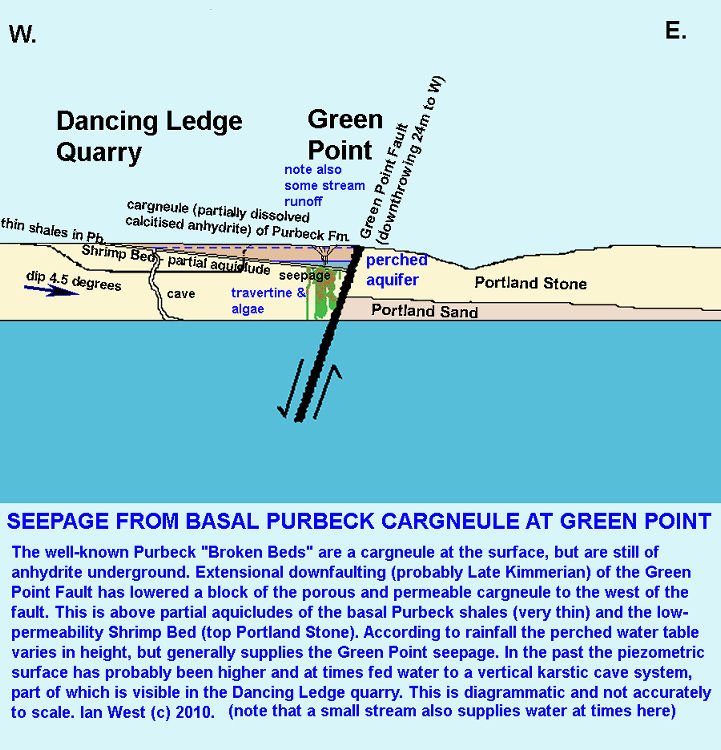 Diagram explaining the seepage from a perched aquifer at Green Point, near Dancing Ledge, Isle of Purbeck, Dorset