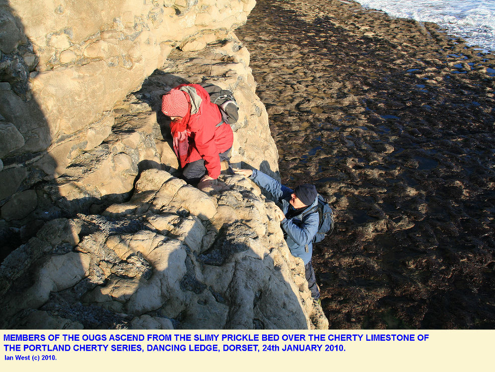 OUGS members ascend a rock face from the Lower Ledge at Dancing Ledge, near Swanage, Isle of Purbeck, Dorset, 24th February 2010