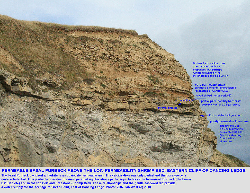 Details of the basal Purbeck strata at the eastern end of Dancing Ledge, near Swanage, Isle of Purbeck, Dorset, showing a potential perched aquifer and feeder for the Green Point seepage