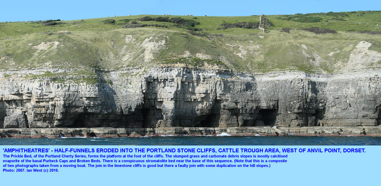 The amphitheatres or half-funnel shaped features in the Portland Stone cliffs, seen from a boat just over a kilometre west of Anvil Point,  near Swanage, Isle of Purbeck, Dorset, 2007