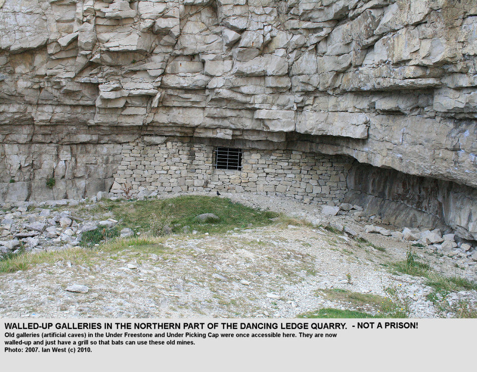 Old galleries of the quarrying in the nothern part of the Dancing Ledge Quarry, near Swanage, are now walled up and only bats now have access, through the gaps in a steel grill