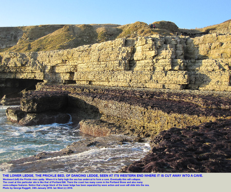 The western end of the lower ledge of Dancing Ledge, near Swanage, Isle of Purbeck, Dorset, with major sea-cave development, January 2010