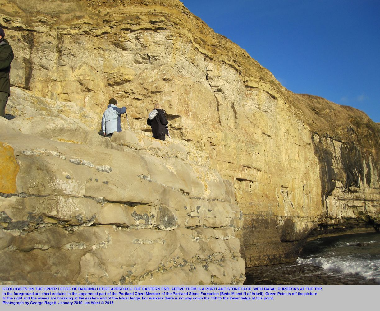 The eastern end of the upper ledge of Dancing Ledge, near Swanage, Isle of Purbeck, Dorset, 2010