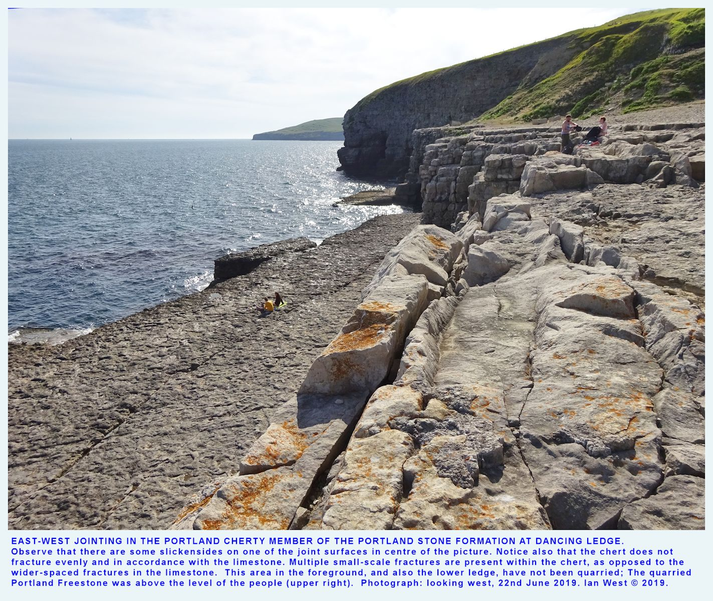 The east-west jointing pattern in the Portland Cherty Member at the Dancing Ledge quarry, 22nd June 2019, Ian West