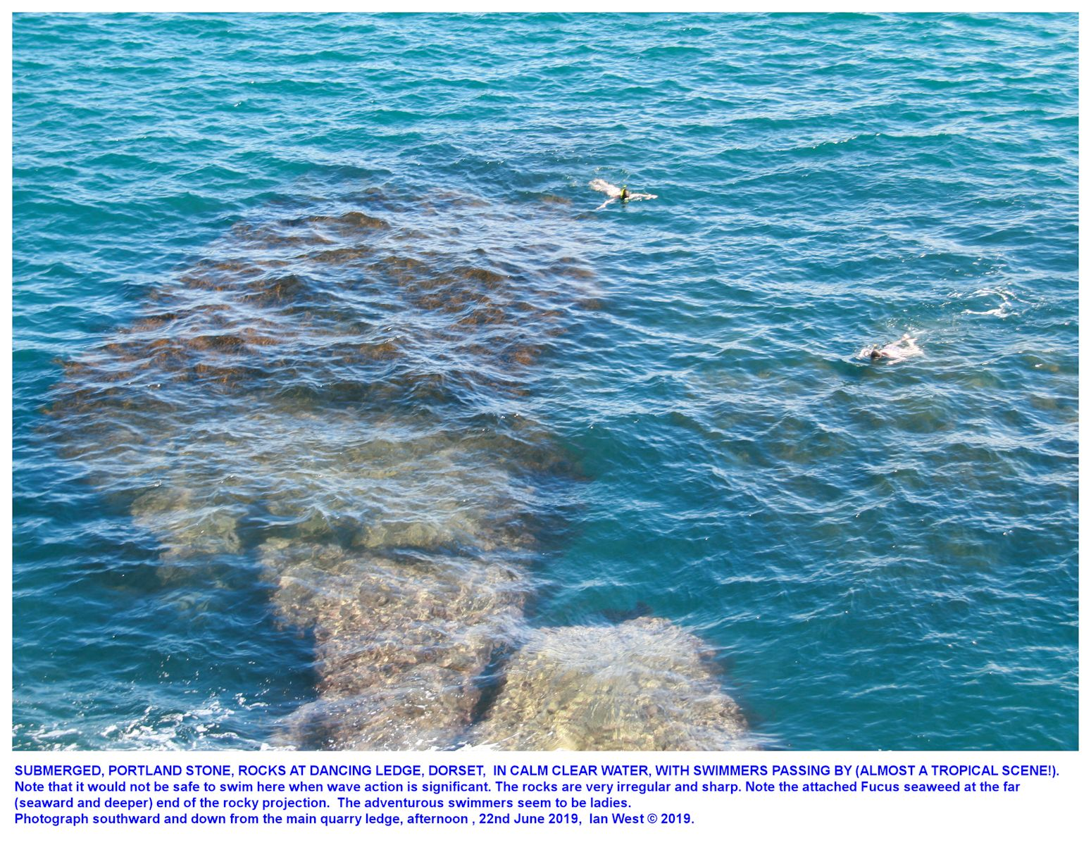 Swimmers in calm, clear seawater, just off the lower (Chert Member) sea-ledge art the Dancing Ledge quarry, Dorset, 22nd June 2019, Ian West