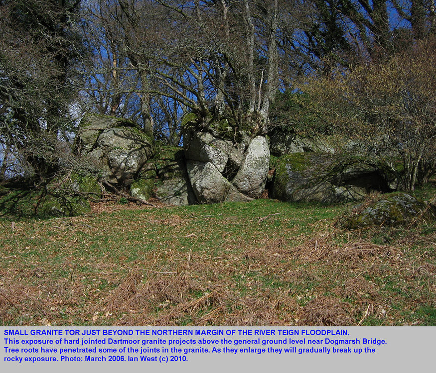A small granite tor at the northern margin of the relatively wide floodplain of the River Teign, near Dogmarsh Bridge, Dartmoor, Devon, March 2006