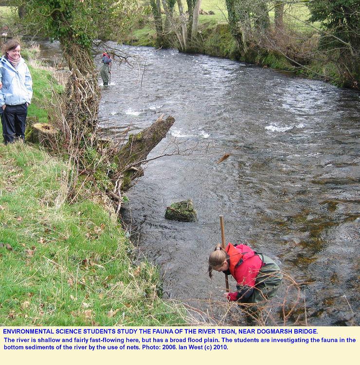 Students study the fauna of the River Teign near Dogmarsh Bridge, Dartmoor, Devon, in 2006