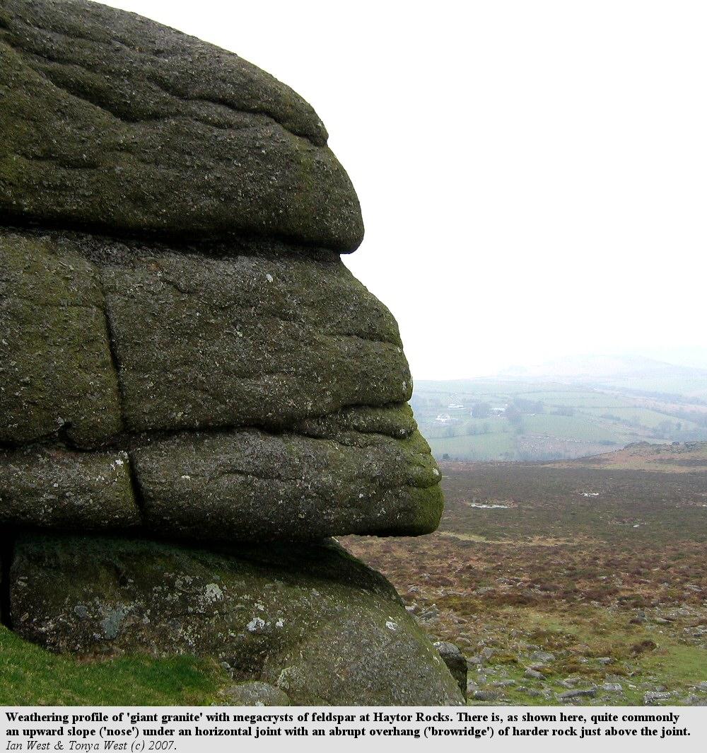 Geology Of Dartmoor Devon By Ian West